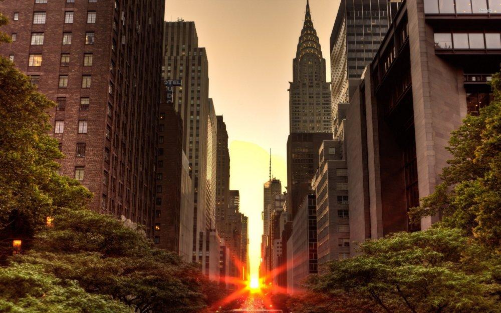 park-avenue-usa-big-apple-new-york-new-york-city.jpg